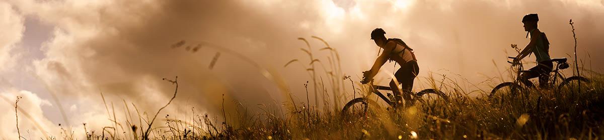 bikesrentals.jpg