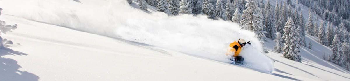 skis2.jpg