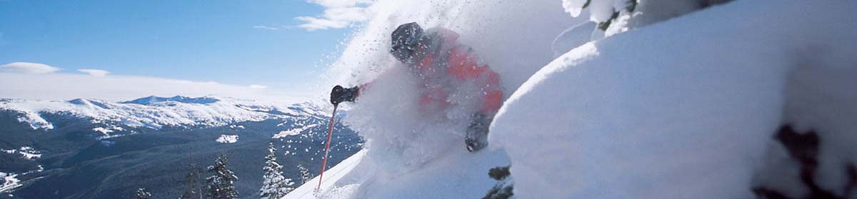 skis4.jpg