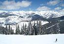 Vail Ski, Snowboard & Bike Rentals